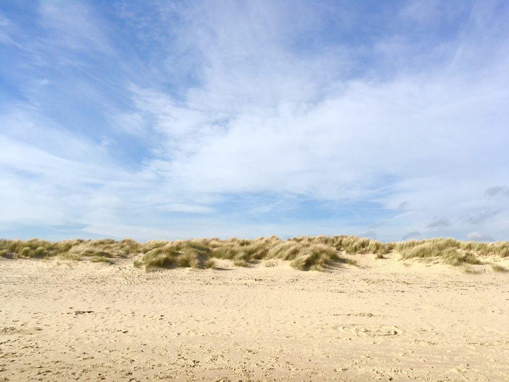 sand dunes at knoll beach studland bat
