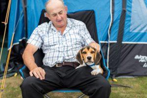 dog friendly camping at ulwell holiday park
