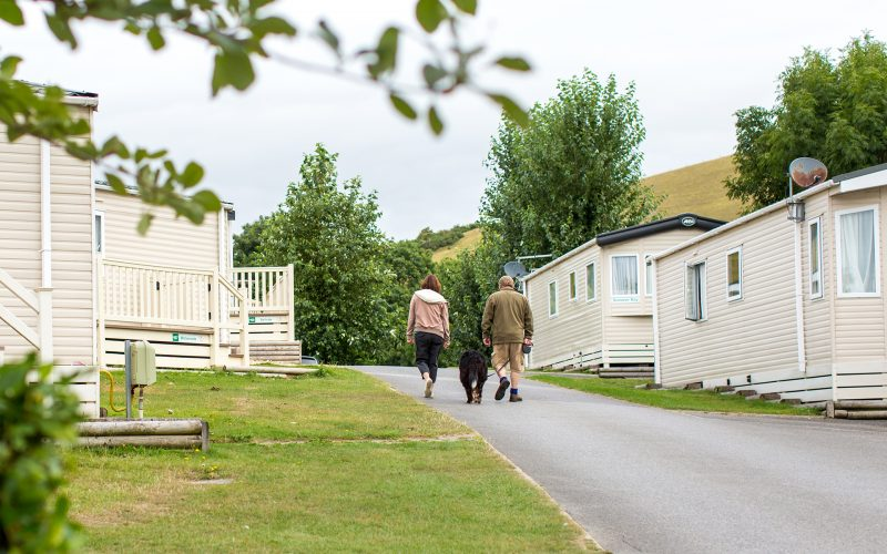 couple and dog walking through the holiday homes for hire