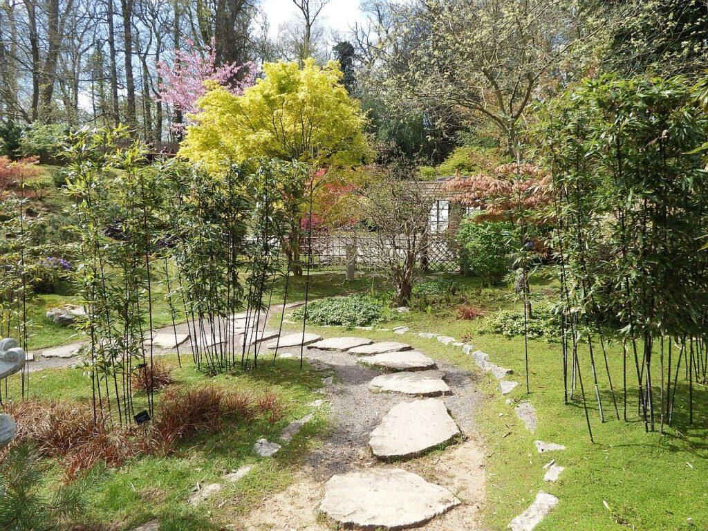 japanese garden kingston lacy