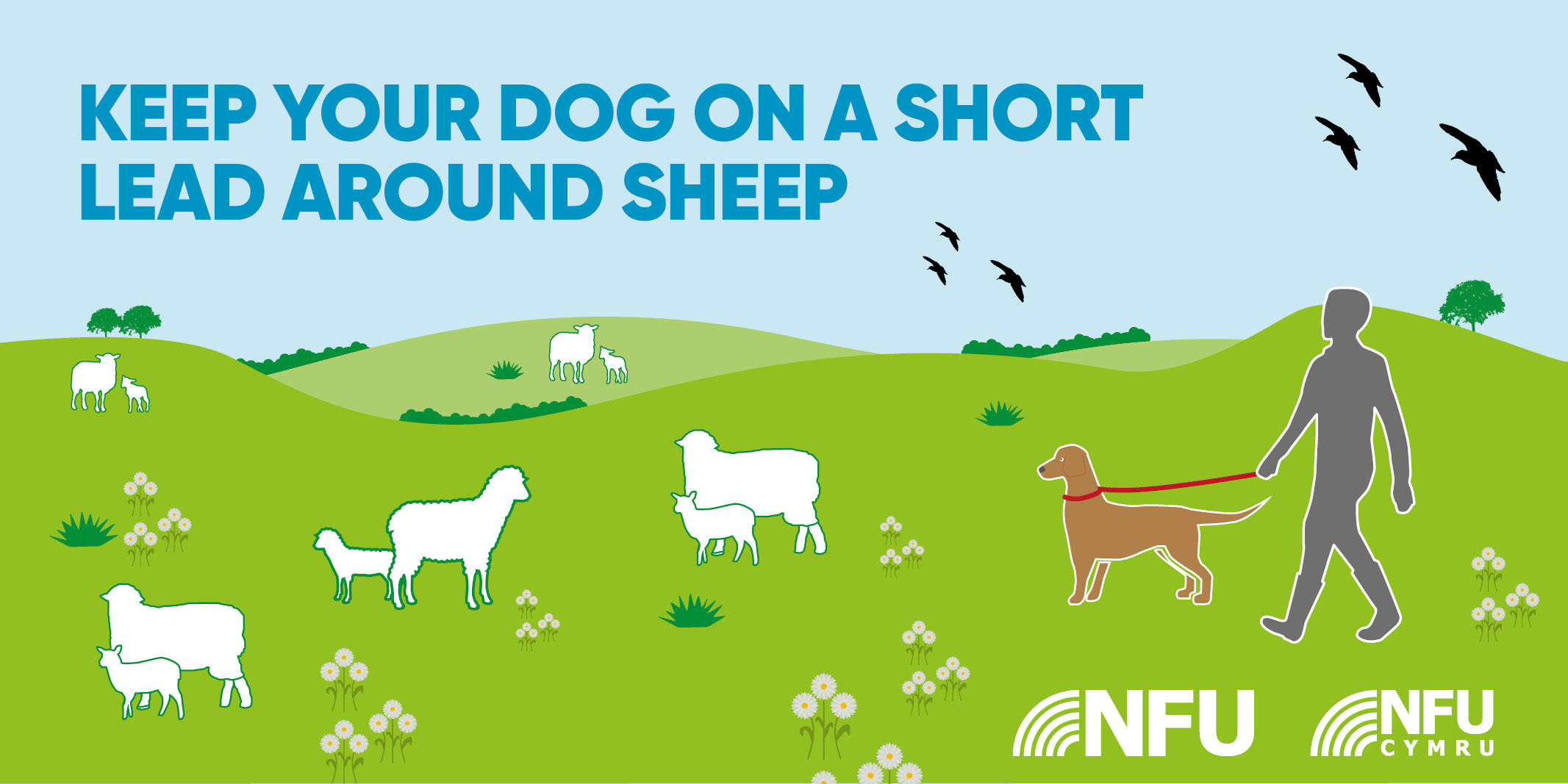 keep your dog on a short lead