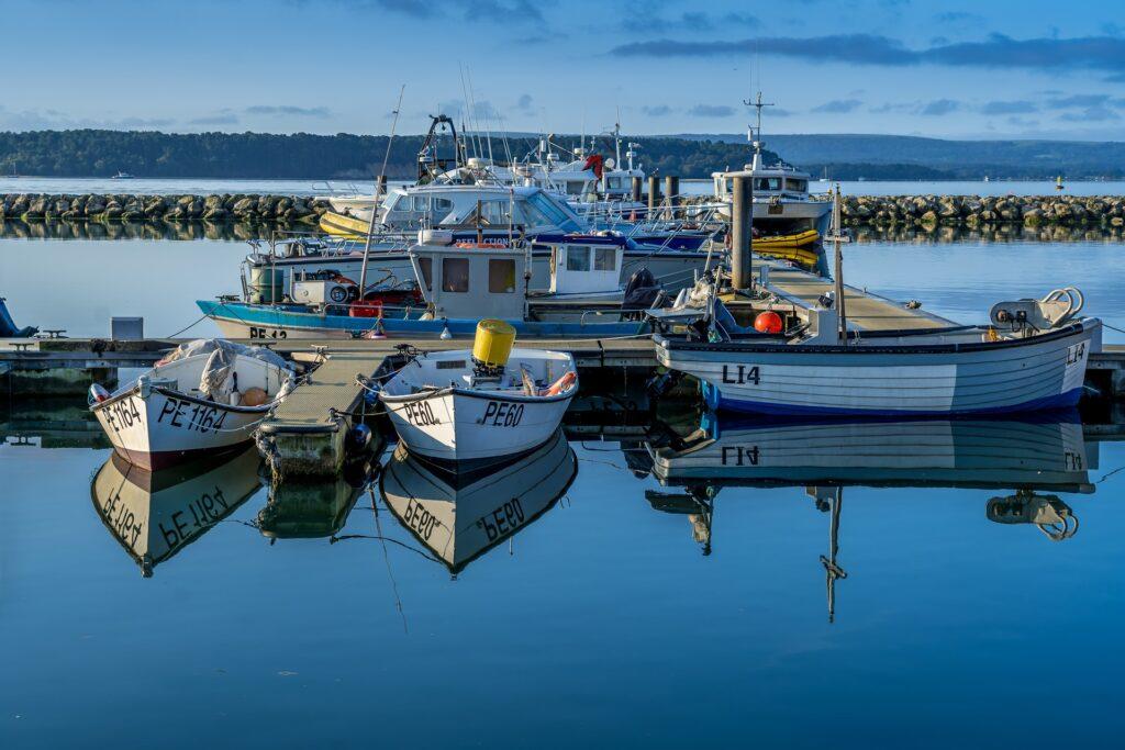 boat trips poole