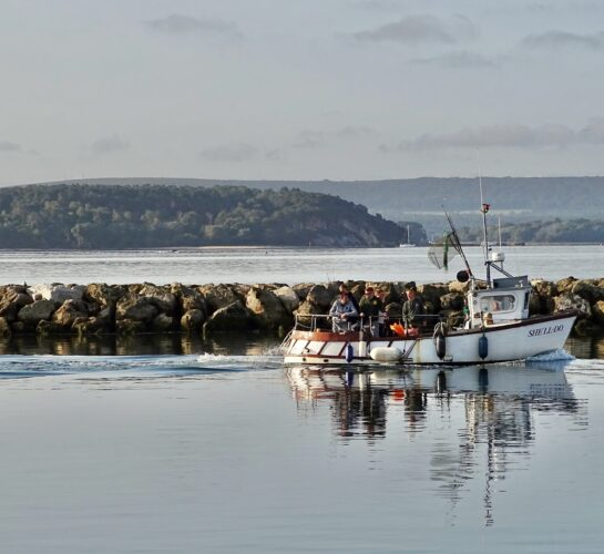 fishing boat poole harbour